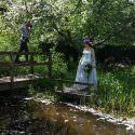 Fairy brides